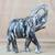 Wood sculpture, 'Whitewashed Elephant' - Whitewashed Sese Wood Elephant Sculpture from Ghana (image 2) thumbail
