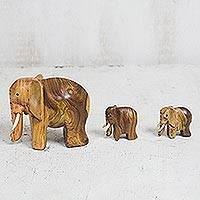 Ebony wood figurines, 'Leading Mother' (set of 3) - Ebony Wood Elephant Figurines from Ghana (Set of 3)