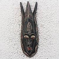 African wood mask, 'Glorious Apata' - Fish-Themed African Wood Mask from Ghana