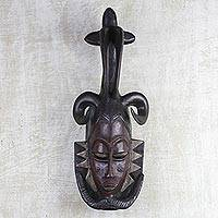 Ivoirian wood mask, 'Brave and Noble' - Ivoirian wood mask