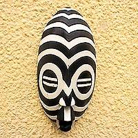 Akan wood mask, 'A Friend Remembers' - African Wood Zebra Mask