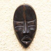 Dan wood mask, 'Protecting the Traveler' - Dan wood mask