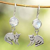 Moonstone dangle earrings, 'Cool Kitty Cat'