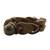 Braided leather bracelet, 'Crazy About You' - Brown Braided Leather Wristband Bracelet (image 2b) thumbail