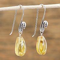 Amber dangle earrings, 'Golden Swan Pond' - Sterling Silver Swan Earrings with Mexican Amber