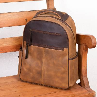 5654ca204a23 Men s Handcrafted Brown Leather Backpack from Mexico - All Terrain ...