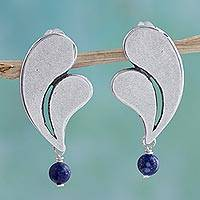 Sterling silver dangle earrings, 'Smooth Feathers' - Sterling Silver Blue Lapis Lazuli Earrings from Mexico