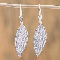 Sterling silver dangle earrings, 'Leafy Shimmer' - Sterling Silver Leaf-Shaped Dangle Earrings from Mexico