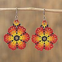 Glass beaded dangle earrings, 'Blazing Flowers'