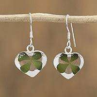 Natural leaf dangle earrings, 'Clover Hearts' - Heart-Shaped Natural Clover Dangle Earrings from Mexico