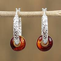 Amber hoop earrings, 'Glittering Glory' - Amber and Sterling Silver Hoop Earrings from Mexico