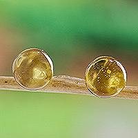 Amber stud earrings,