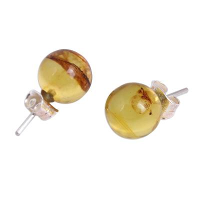 Round Natural Amber Stud Earrings from Mexico
