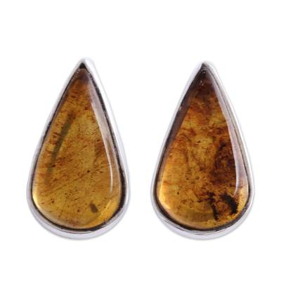 Drop-Shaped Amber Stud Earrings from Mexico