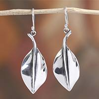 Sterling silver dangle earrings, 'Smooth Leaves' - Sterling Silver Leaf Dangle Earrings from Mexico