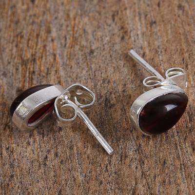 Buckler Earrings