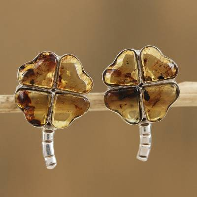 f0c5cb6a6 Amber button earrings, 'Ancient Luck' - Amber Four-Leaf Clover Button  Earrings