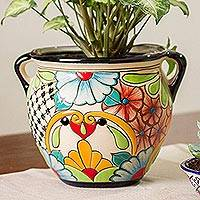 Featured review for Ceramic flower pot, Talavera Majesty