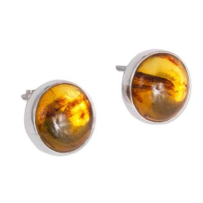 Round Natural Amber Button Earrings from Mexico
