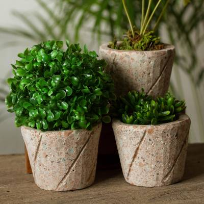 Reclaimed stone flower pots, 'Plant Stripes' (set of 3) - Spiral Pattern Reclaimed Stone Flower Pots (Set of 3)