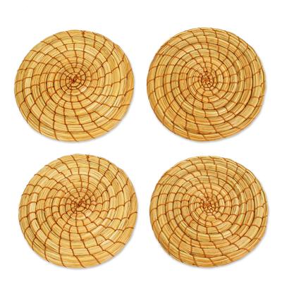 Natural Pine Needle Coasters (Set of 4)