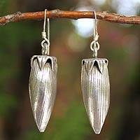 Silver dangle earrings, 'Forbidden Fruit' - Silver 950 Fruit dangle earrings