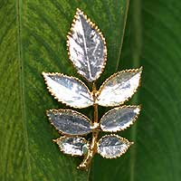 Natural rose leaves brooch pin, 'Silver Leaf' - Natural rose leaves brooch pin