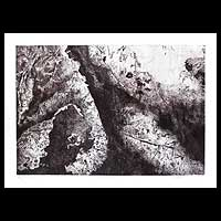 'The Wrinkle I' - Lotus Leaf Original Etching Print