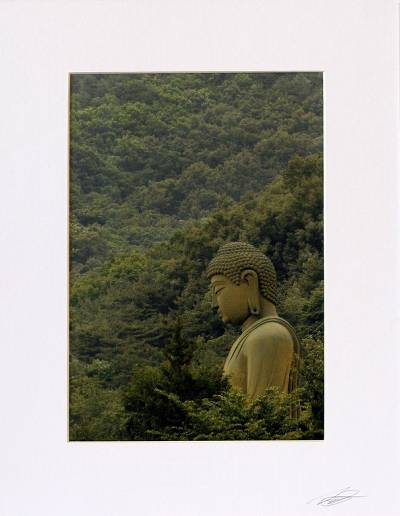 'Forest Buddha' - Color Photograph Print