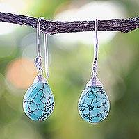 Silver dangle earrings, 'Subtle'