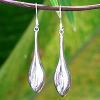 Sterling silver dangle earrings, 'Sleek Dewdrop' - Sterling Silver Dangle Earrings