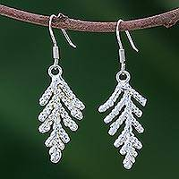Natural leaf silver plated earrings, 'Cypress Honor'