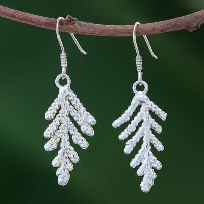 Natural leaf silver plated earrings, 'Cypress Honor' - Silver Plated Natural Leaf Earrings