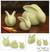 Celadon ceramic figurines, 'Chiang Mai Rabbits' (set of 3) - Handcrafted Thai Green Celadon Rabbits with Distinctive Crac (image 2) thumbail