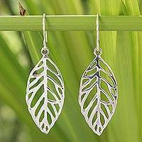 Sterling silver dangle earrings, 'New Leaf'