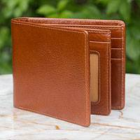Men's leather wallet, 'Brown Minimalist' - Men's leather wallet