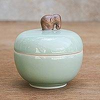 Celadon ceramic jar, 'Brown Elephant' - Thai Celadon Ceramic Jar and Lid