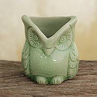 Celadon ceramic toothpick holder, 'Happy Green Owl'