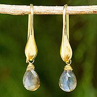 Gold vermeil labradorite dangle earrings, 'Mystical Glamour' - Labradorite Dangle Earrings in 24k Gold Vermeil