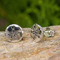Sterling silver button earrings, 'Sand Dollar' - Hand Crafted Seashell Design Sterling Silver Button Earrings