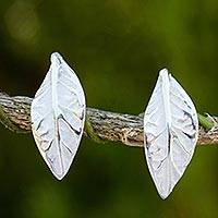 Sterling silver button earrings, 'Young Leaf'