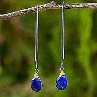 Lapis lazuli dangle earrings, 'Midnight Meadow'