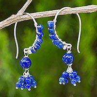Lapis lazuli beaded dangle earrings, 'Midnight Dancer' - Beaded Lapis Lazuli and Sterling Silver Dangle Earrings