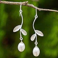 Cultured pearl dangle earrings, 'White Jasmine Bud' - White Cultured Pearl Floral Dangle Earrings in Silver 925