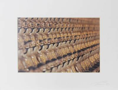 'A Thousand Buddhas' - Matted Color Photograph of Golden Buddha Sculptures