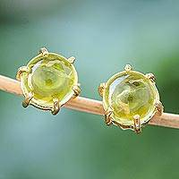 Gold plated peridot stud earrings, 'Thai Buds'