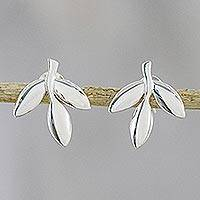 Sterling silver button earrings, 'Olive Leaves' - Leaf-Shaped Sterling Silver Button Earrings from Thailand
