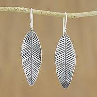 Sterling silver dangle earrings, 'Tropical Banana Leaf'