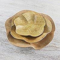 Wood appetizer bowls, 'Pretty Plumeria' (set of 3)