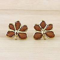 Gold plated natural orchid button earrings, 'Espresso Radiance' - Espresso Gold-Plated Natural Orchid Button Post Earrings